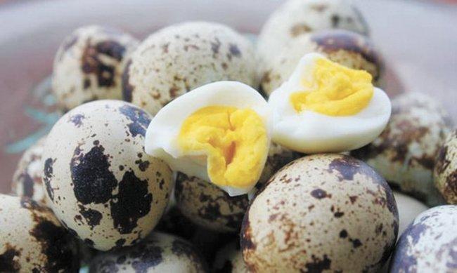 Що потрібно знати про перепелині яйця. Як вибирати та готувати