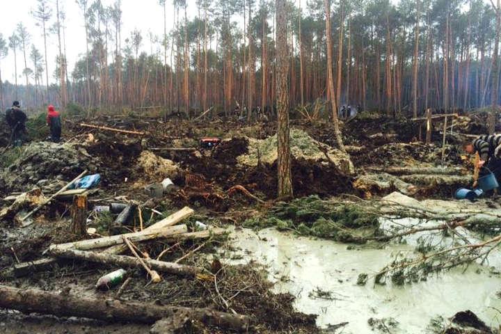 Копачі бурштину спричинили екологічну катастрофу в Україні: наслідки непоправні