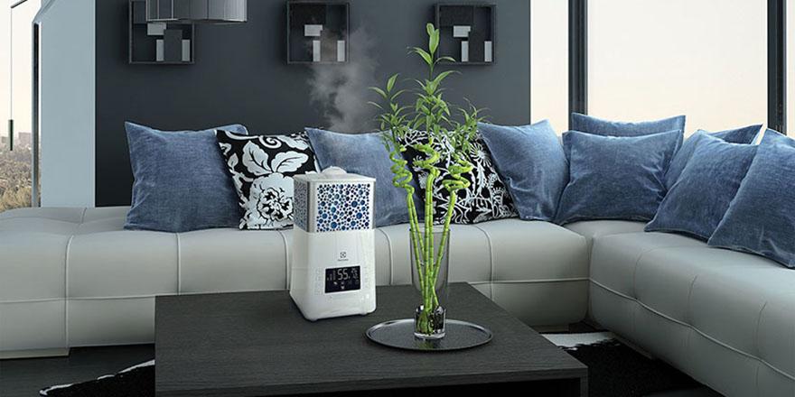 Як позбутися від зайвої вологи в житловому приміщенні за допомогою осушувача повітря