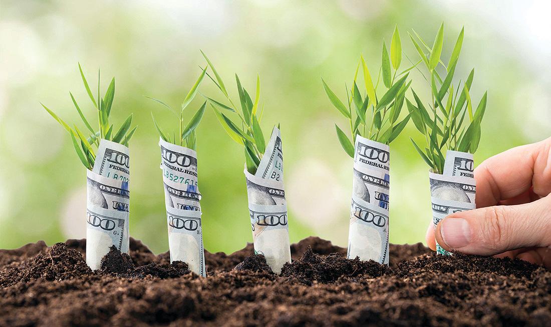 Ринок землі в Україні: Мілованов розповів, як зміниться ціна за гектар
